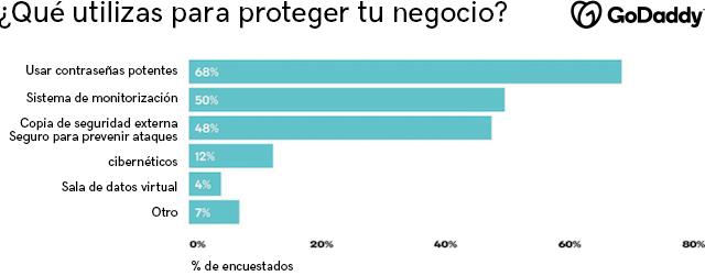 Gráfico sobre cómo protegen sus negocios los dueños de las empresas