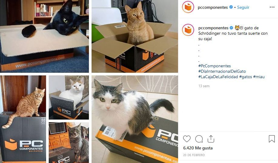 Imagen de la cuenta de PC Componentes sobre el Día Internacional del Gato