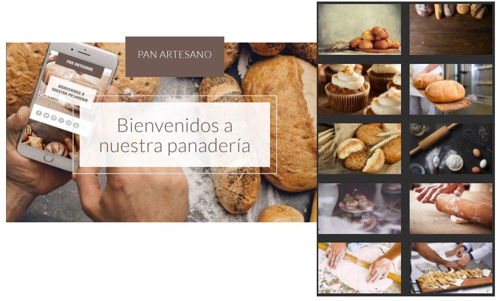 página web con muestra de imágenes de inventario
