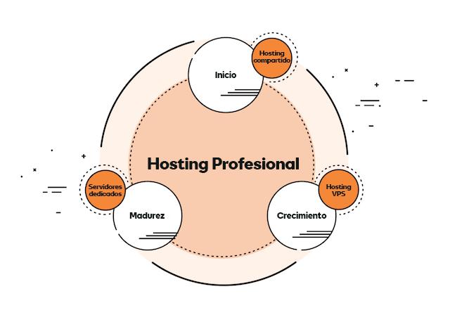 Imagen del ciclo de vida del hosting con Hosting Profesional incluido