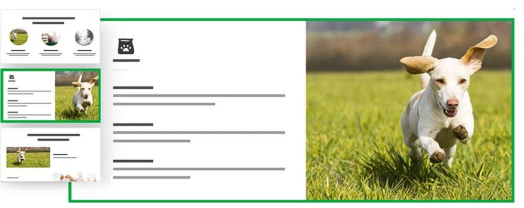 Formato información diseñar una página web