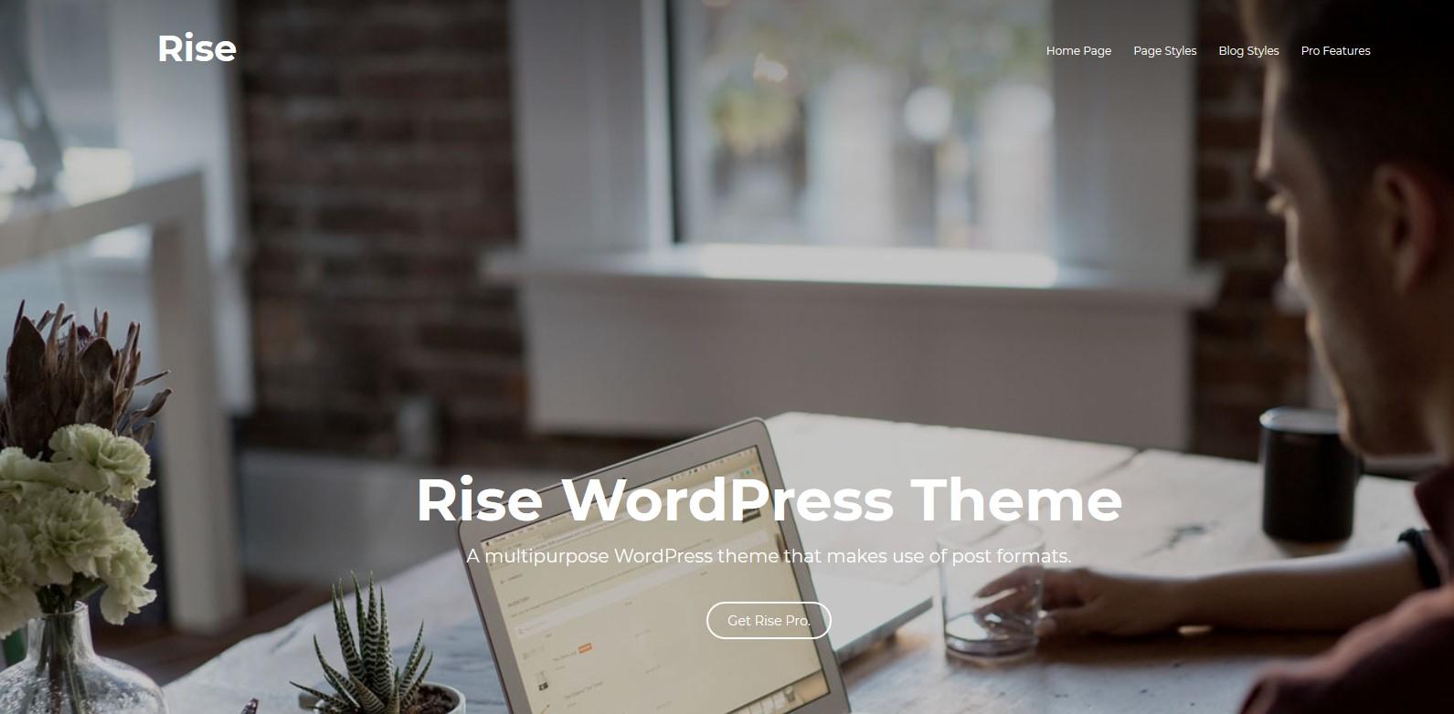 Mejores plantillas gratis de WordPress Rise
